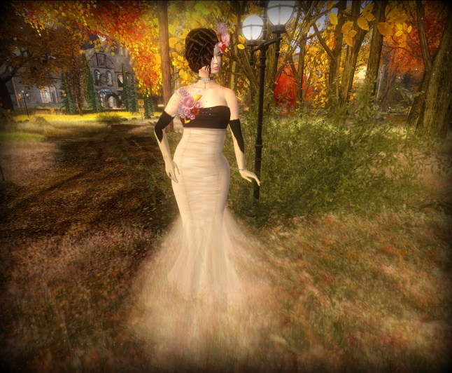 bl018-1018-evening-gown_001-bmp