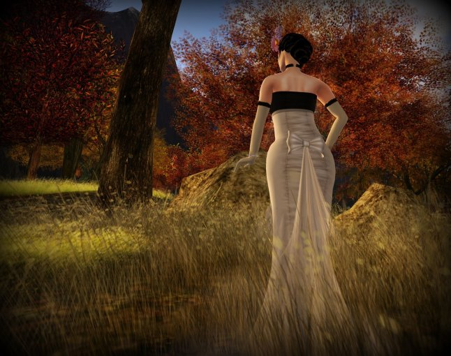 bl018-1018-evening-gown_003-bmp
