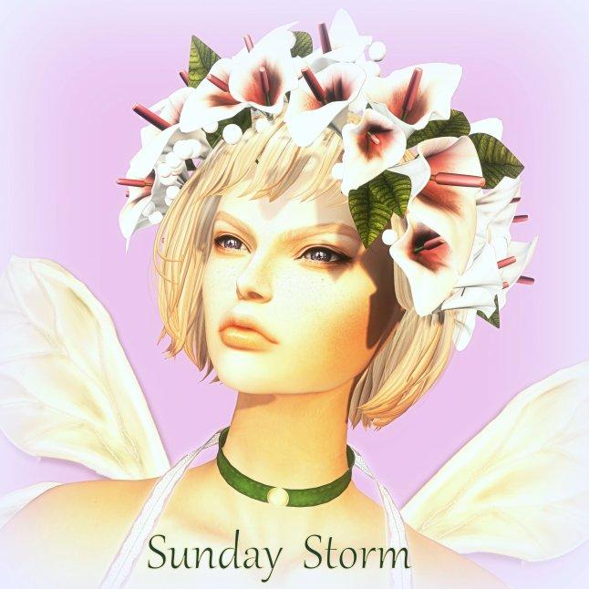 sunday-profile_008-bmp