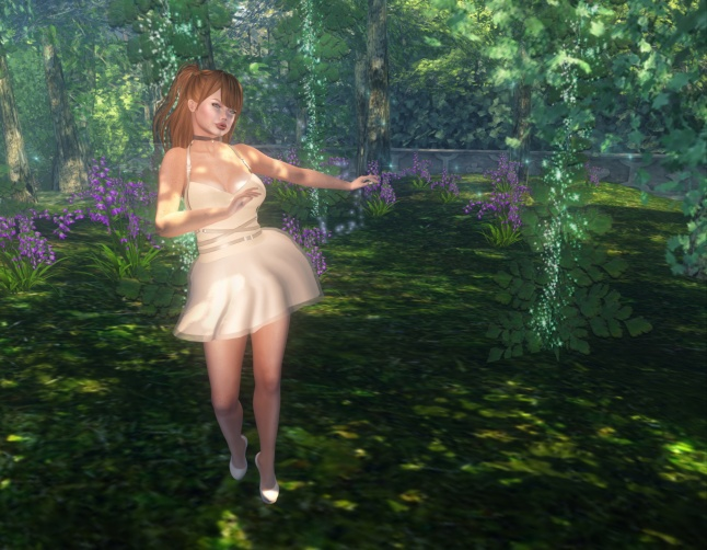 Sunday-Blog-09-16_004.bmp