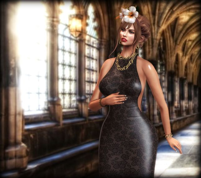 D2T - long sexy gown - Isabella_004S