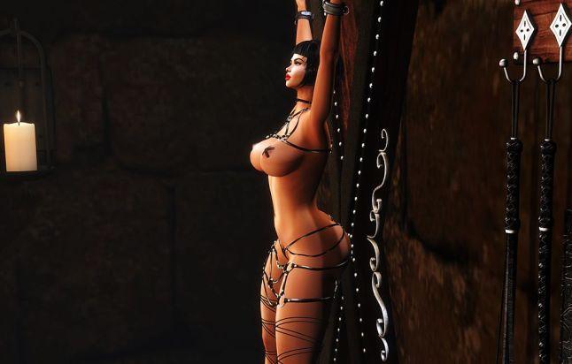 lic - bdsm-exposette-harness_011s